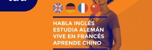 cursos de idiomas privados inglés, francés, alemán y chino - Tau Formar- formacion privada